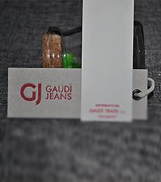 GAUDI-秋蝶案例
